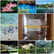供应景观水工程景观水除藻药剂厂家供应图片