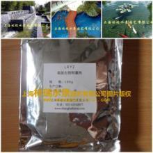 供应花园鱼池景观水处理药剂价格