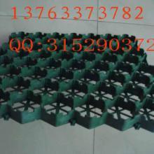 供应都匀塑料建材植草格X