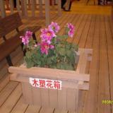 供应山东木塑花箱