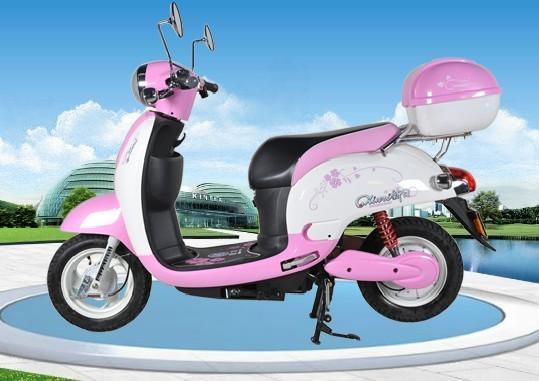 电动摩托车图片 电动摩托车 样板图 新日 风雅16 高清图片