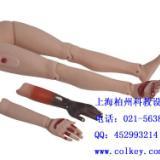 高级创伤四肢模型 ,创伤护理训练模型