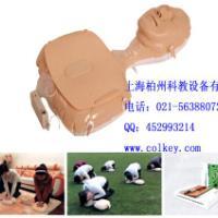 迷你型心肺复苏训练模拟人,迷你型心肺复苏训练假人(上海)