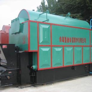 1吨燃煤蒸汽锅炉图片