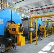 山东潍坊燃煤锅炉燃气锅炉价格图片