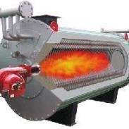 6吨燃煤锅炉/2吨燃气锅炉/图片