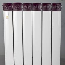 供应暖杨杨散热器中国优质名牌产品