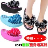 2012夏新款凉鞋图片