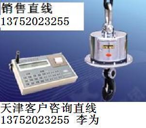 云南20T耐高温电子吊钩秤图片