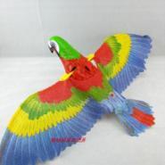 西安电动鹦鹉批发图片