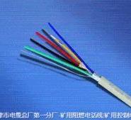 本安电缆本安信号电缆控制电缆图片
