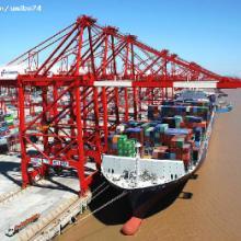 供应温州船务船运公司温州到天津集装箱海运物流全海海运