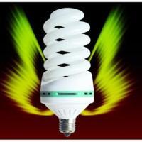 供应优质节能灯