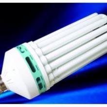 供应大功率U型节能灯