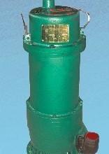 供应BQS矿用隔爆型排污排沙水电泵