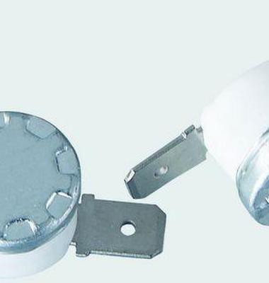 温控器图片/温控器样板图 (4)