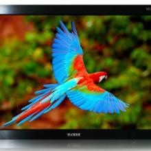 供应21寸LCD液晶显示器批发