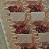 塑料机械输送带,食品输送带