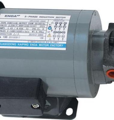 马达泵/摆线泵图片/马达泵/摆线泵样板图 (1)