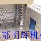 供应四川省恒温烤箱/干燥箱/烤箱