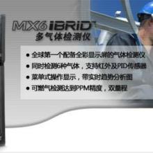 供应英思科MX6多气体检测仪,六合一气体检测仪(全彩屏)图片
