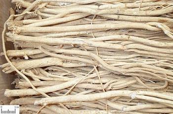 吉林省中药材东北根茎类丨报价、供应、销售