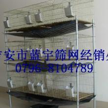 供应吉安动物养殖笼