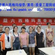 2013奥咨博北京上海广州六西格玛绿带黑带质量经理培训报名中批发