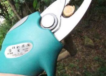 果树修枝电动剪刀图片