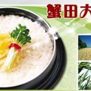 最正宗的盘锦蟹田大米图片