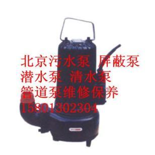 北京修理各种电机水泵污水泵潜水泵图片