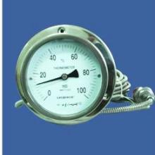 供应压力式温度计国产替换进口不锈钢压力式温度计WTZ-280图片
