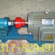 2CY系列齿轮泵价格图片
