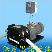供应批量型蠕动泵