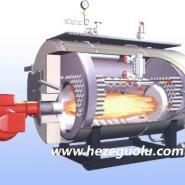 1吨燃煤燃气热水蒸汽锅炉图片