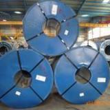 供应冷轧板/冷轧板价格/宝钢冷轧板