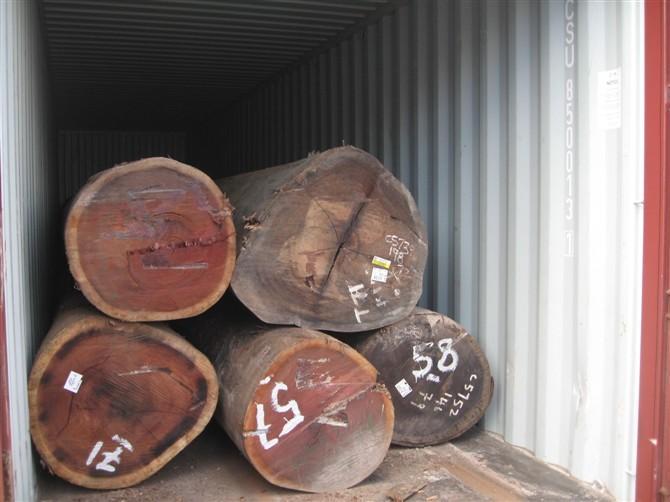 供应木材进口报关图片