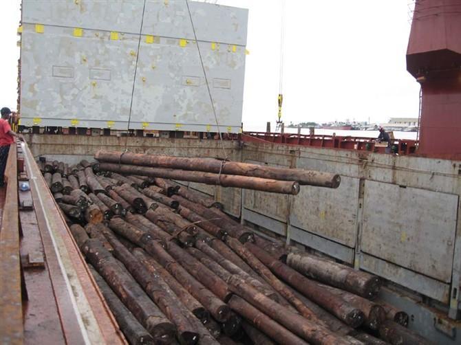 供应木材进口代理公司广州图片
