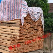 供应樟子松木板材