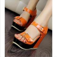 2012新款鞋坡跟鱼嘴凉鞋拼色图片