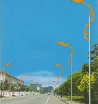 led路灯系列产品图片/led路灯系列产品样板图 (3)