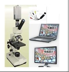 供应陕西显微镜厂家