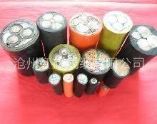 供应特种电缆,特种电缆厂家,特种电缆批发价格多少
