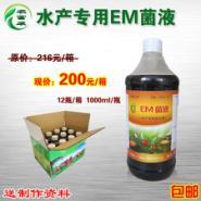 杭州em菌液用于水产养鱼的用法图片