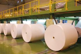 供应新乡双胶纸价格新乡双胶纸厂家