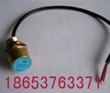 供应位置传感器 GUH10型位置传感器价格 专业生产位置传感器
