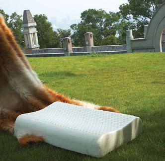 护颈按摩枕图片/护颈按摩枕样板图 (1)