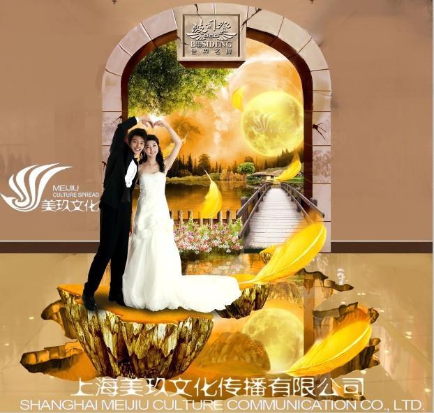 3d婚纱摄影_3d立体婚纱背景图