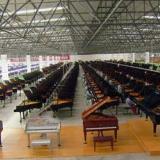 供应广州恺撒堡三角钢琴价格趋势  GH148促销价32800元