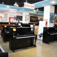 供应湛江学钢琴